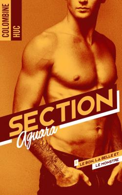 Section Aguara & Co - Tome 3